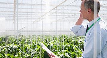 servizi di consulenza aziende agricole