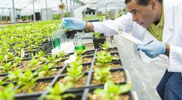 valutazione resistenze patogeni